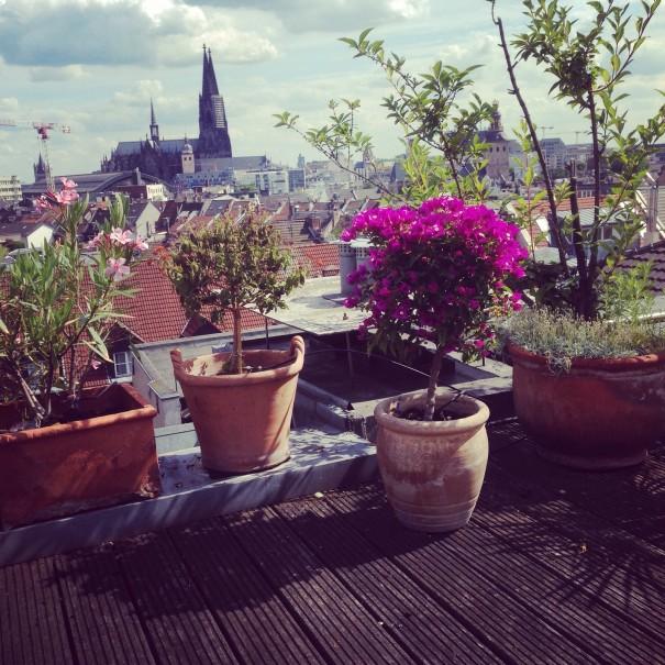 Kölnin airbnb-kodin  kattoterassi oli kuudennessa kerroksessa, mutta kaiteita ei ollut. Ei haitannut, oihan siinä kauniita kukkia.